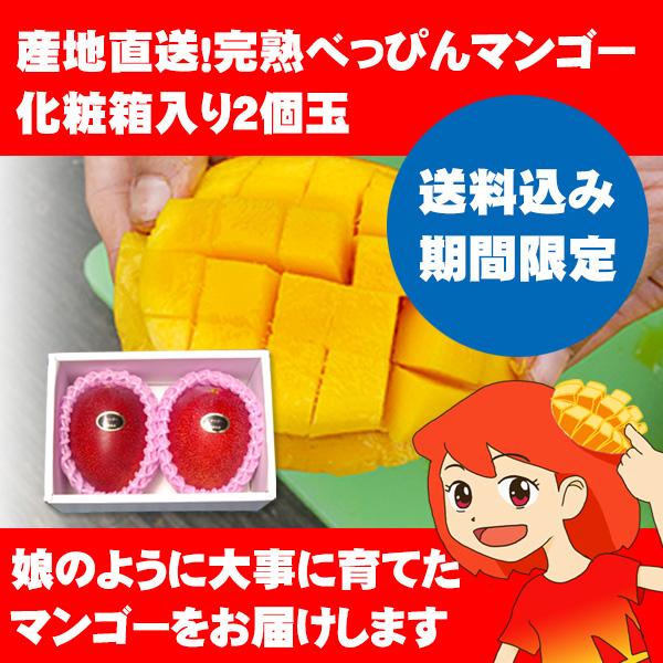 送料込み期間限定 産地直送!完熟べっぴんマンゴー 化粧箱入り2個玉