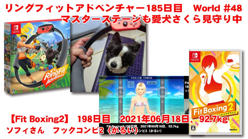 【リングフィットアドベンチャー】 185日目 マスターステージも愛犬さくら見守り中 【Fit Boxing2】198日、2021年06月18日、92.7kg ソフィさん フックコンビ2(かるい)